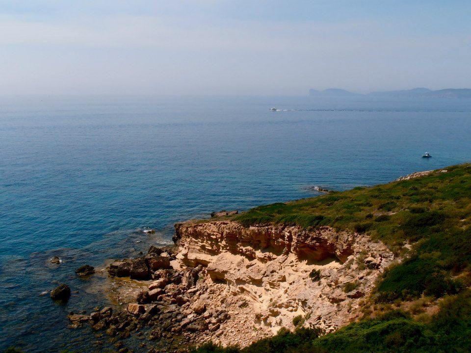 Coast Bosa